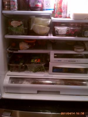 Here you can see the broken shelf and broken veggie bins in our LG refrigerator