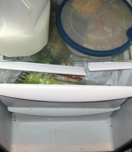 Frigidaire Side by Side Refrigerator Review - Broken Plastic Holding the Shelves